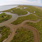 Maryland Island Restoration Wins ASCE's Sustainability Innovation Award