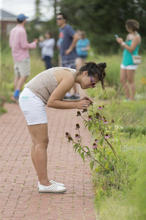 A Younger Member inspects foliage on the Fort Reno Green Roof