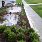 Kansas City's Middle Blue River Green Infrastructure Earns Envision Platinum