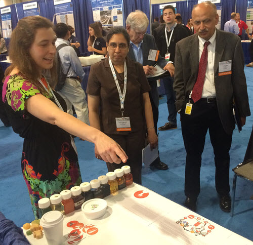ASCE judges Venisri Nagulapati, Richard Cramond, and Satish Soni look at student projects during the EPA's P3 National Sustainable Design Expo. PHOTO: Alex Rosenheim